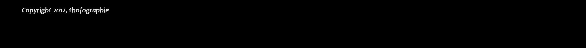 Forum Lumière