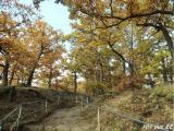 Roßtrappe 2015 - Herbst 043.JPG