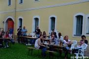 CRAZY BIRDS 07.06.14 Dresden (45).jpg