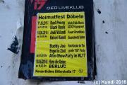 Hans die Geige 19.06.16 Stadtfest Döbeln (1).JPG