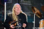 Hans die Geige 19.06.16 Stadtfest Döbeln (99).JPG