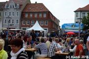 SPLiTT 11.06.16 Stadfest BIW Schiebock  (39).JPG