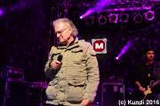 Crazy Birds 17.06.16 Stadtfest Döbeln (99).JPG