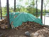 15 Feuerholz im Glaskogen Naturreservat.JPG