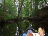 ab Eutin 12.06.2011 001.jpg