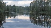 Schweden-2014_0413_bearbeitet-1.jpg
