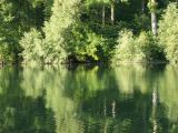 Altrhein Germershein August 08 021.jpg