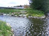 Fischtreppe Nabburg 001.jpg