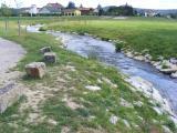 Fischtreppe Nabburg 002.jpg