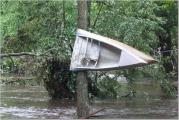 gpearcy_canoe.jpg