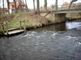 Einstieg_Bohlsener_Mühle_bei flachemWasser_Feb_2011.JPG