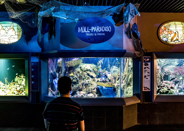forum bersicht aquarium zoo berlin m ll so weit das auge reicht. Black Bedroom Furniture Sets. Home Design Ideas