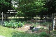 Veggy Garden May 21st 014-1.jpg