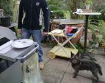 2014 Okt. Huelin war mit zum Grillnachmittag im Garten eingeladen  (4).JPG