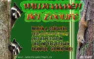 zoolife2.jpg