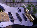 Squier Pickguard0171.jpg