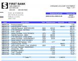 bank statement-Paul.JPG