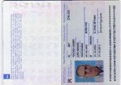 Passport  Gold alice.jpg