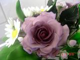 k-DSC09511 Rose groß HT.JPG