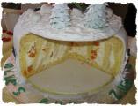 Anschnitt der Snowb. Torte.JPG