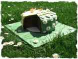 Gänseblümchenwiese mit Torte.jpg