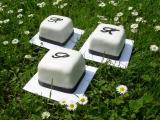 Mini Torten 24. Mai 2010 008.jpg