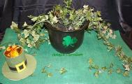 pot of gold and leprechaun hat decoration.jpg