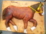 Pferd ganz klein.jpg