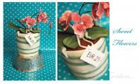 Blumentopf.jpg