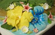 Hawaii-Berg blumen2.jpg