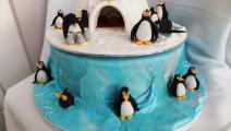 Pingiun5 TT.jpg