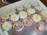 Zitronen-Muffins fertig (512 x 384).jpg
