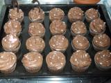 Schoko Cupcakes.jpg