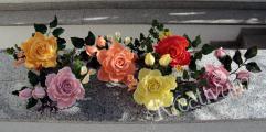 alle Rosen.jpg