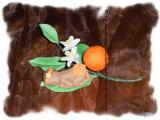Baby Orangia-Sept.2012 003.jpg
