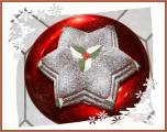 Weihnachtsstern3.jpg