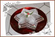 Weihnachtsstern21.jpg