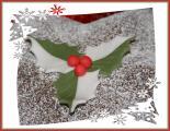 Weihnachtsstern12.jpg