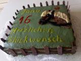 Pferde-Wiesen-Torte (2).jpg