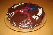spidermanlukas5.JPG