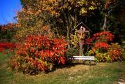 Herbst06B.JPG