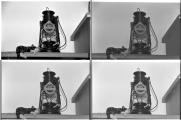 03-04-11 Zusammenstellung Copex Rapid-K220.jpg