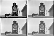 06-04-11 Zusammenstellung Rollei Orth-K220.jpg
