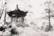 Chinagarten.jpg
