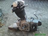 Standar rex Motor.jpg