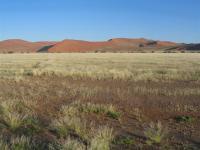 Namibia (170)