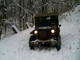 Jeep bearb.1.jpg