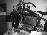 Harley 1a.jpg