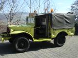 Dodge WC Andelfingen 015.jpg