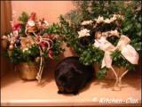 gallerieweihnachtkl02kc.jpg